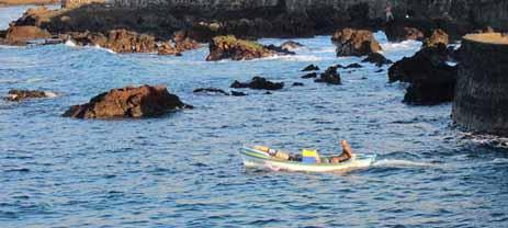 """Coalición Canaria destaca que """"Los pescadores de Puerto de la Cruz recibirán ayudas directas gracias su iniciativa» aprobada en pleno recientemente"""