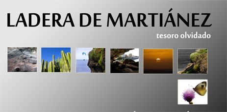 Exposicion Ladera_de_Martianez_portada_Julio_2012