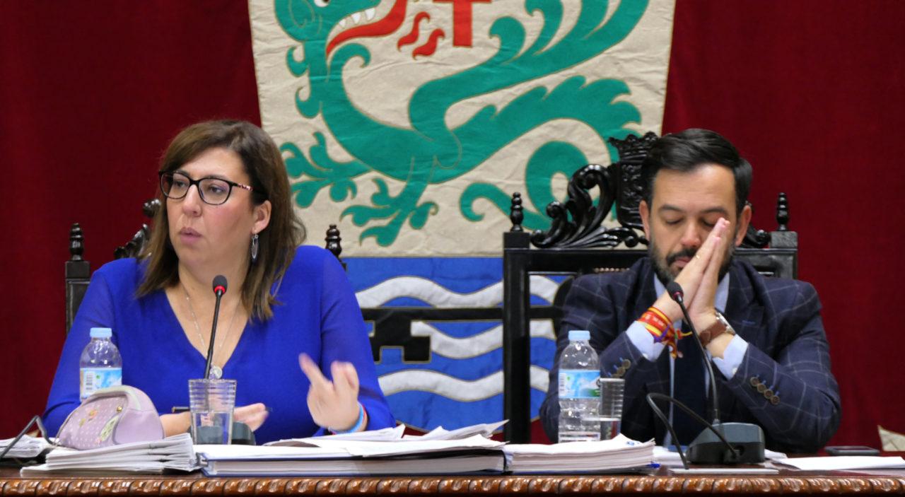 Pleno sobre irregularidades en el Lago Martiánez