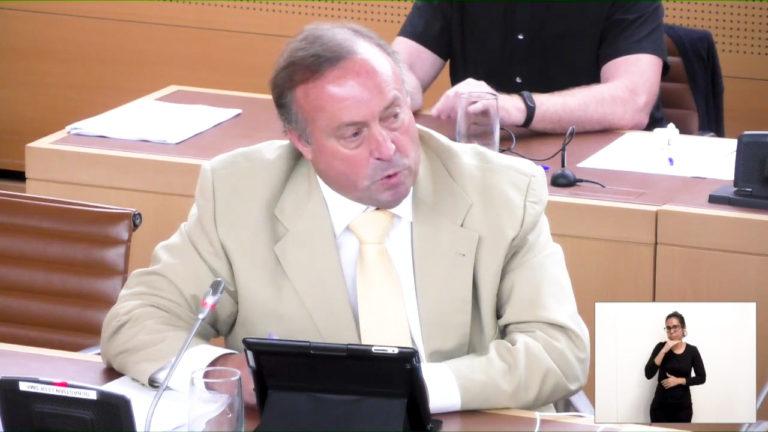 Los retrasos del proyecto del muelle se trataron en el Pleno del Cabildo (VIDEO)