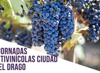Cabecera Jornadas Vitivinicolas