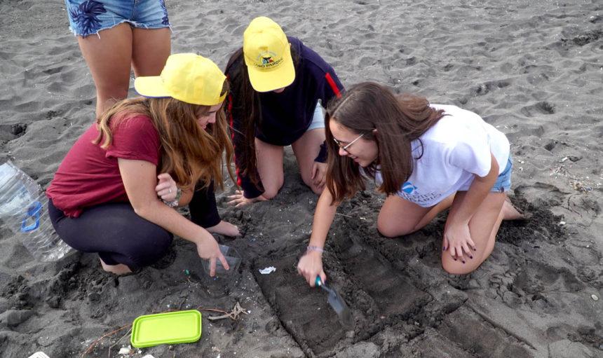 la-arena-de-nuestras-playas (1)