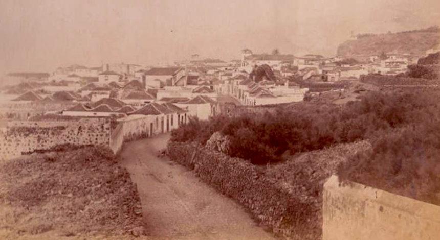 Panoramica del Puerto de la Cruz de finales del siglo XIX