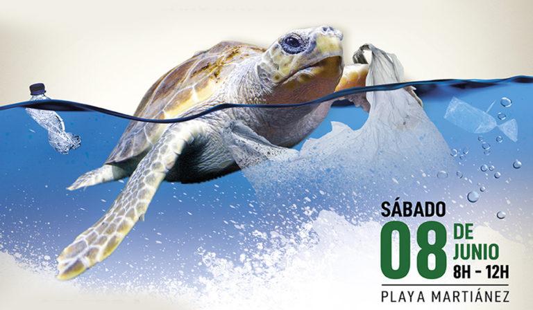 Este sábado en Martiánez jornada de limpieza de plásticos y suelta de tortugas