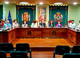 Pleno del 26 de junio de 2019 para el reparto de áreas
