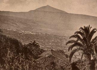 Valle de La Orotava en los años 20 del siglo pasado (FEDAC)