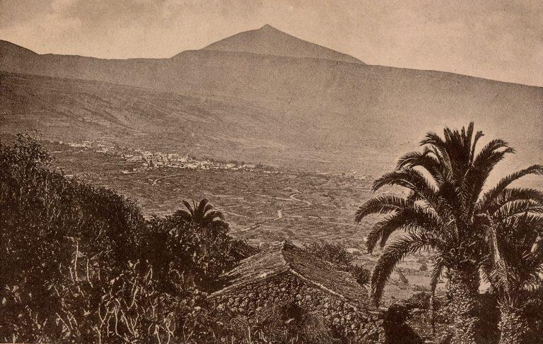 La vivienda en La Orotava durante los años veinte