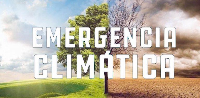 Podemos pide la adhesión de Los Realejos a la Declaración de Emergencia Climática