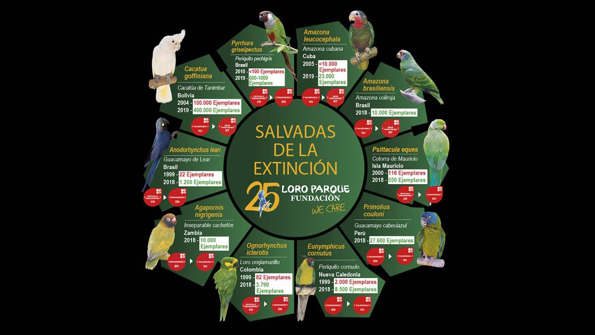 10 especies salvadas