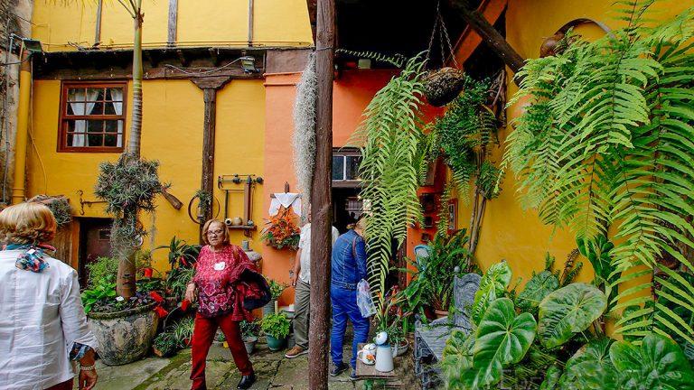 Febrero invitará a descubrir Los Realejos a través del frescor de sus patios