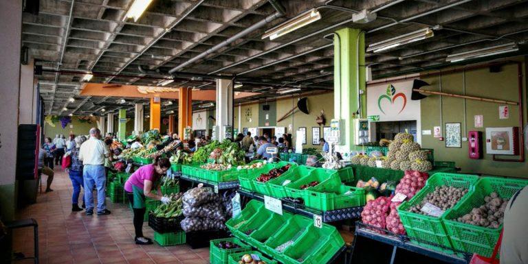 Este sábado se reabre el Mercado del Agricultor de La Guancha