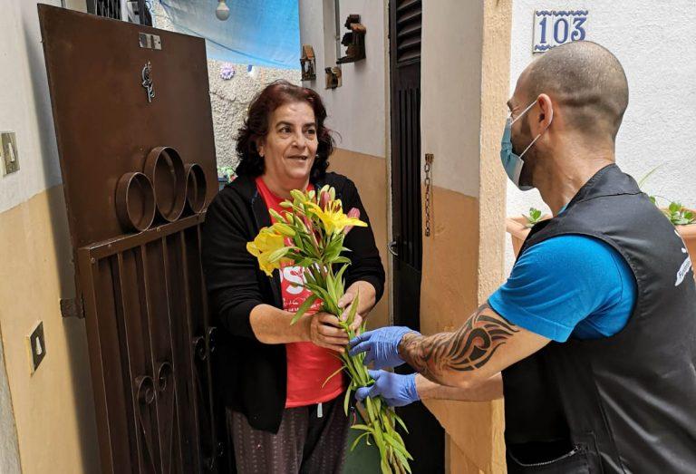 Se reparten más de 3.000 flores en el Valle de La Orotava durante el Día de la Madre