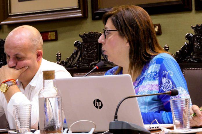 Sandra Rodríguez en una sesion plenaria (archivo)