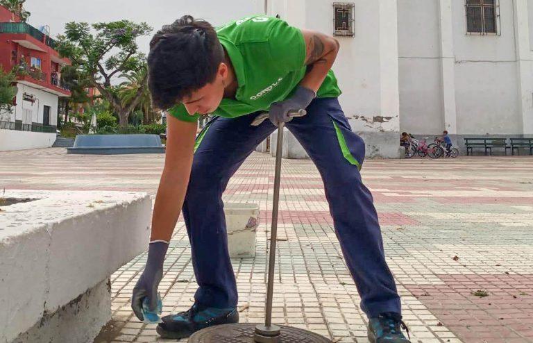 Comienza la campaña de control de plagas del segundo semestre en Puerto de la Cruz