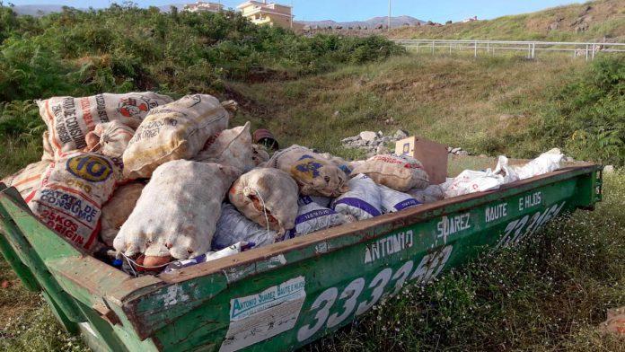 contenedores con sacos de papas bichadas con polilla guatemalteca